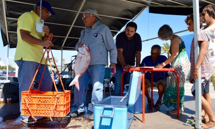 Pargo com 2,900 quilos foi um dos bons exemplares capturados no concurso de pesca ao fundo (®PauloMarcelino)
