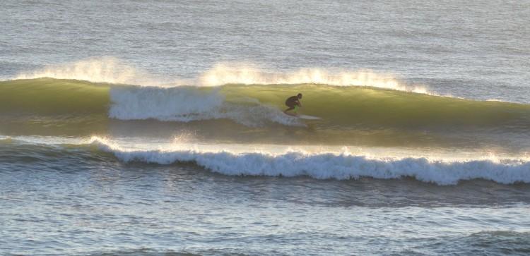 Luís Esteves é atleta Longboard mas também se faz às ondas com 'shortboard' (®GansoPhotos/Arquivo/Nov15/Faro)
