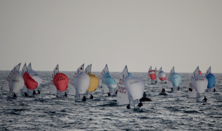 Domingo, 7 de fevereiro, segundo dia de regatas do torneio com programa cumprido na íntegra (®FPV)