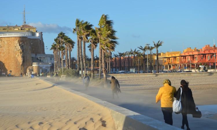 Previsões de 'swell' de norte e com vento forte indicam que será difícil a formação de ondas na Praia da Rocha (®PauloMarcelino/Arquivo)