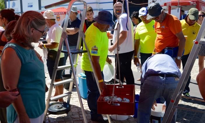Festa CNPortimão   Concurso pesca ao fundo: pesagem (®PauloMarcelino)